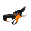 LOGO_Powerful electric secateur BCL22