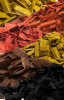 LOGO_Colored mulch