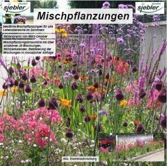 LOGO_Stauden-Mischpflanzungen