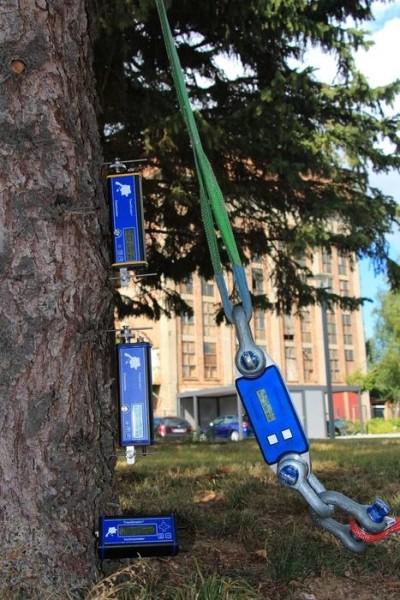 LOGO_TreeQinetic – Zugversuchstechnik