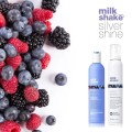 LOGO_Milk Shake Silver Shine