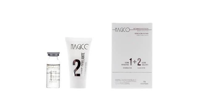LOGO_Magico - 100% Professionell