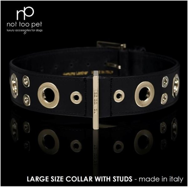 LOGO_Large sizes collection - THE DIFFERENT SIZES HOLLOW STUDS COLLAR - Item code: C1645