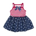 LOGO_SimplyDog Americana Dress