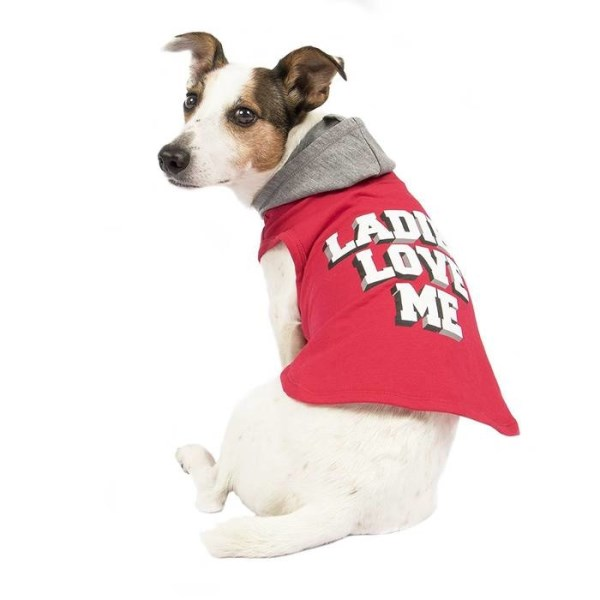 "LOGO_SimplyWag ""Ladies Love Me"" Graphic Print Dog Hoodie"