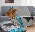 LOGO_Pet Blankets
