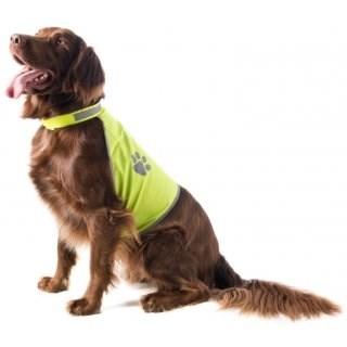 LOGO_Hunde-Sicherheitsweste