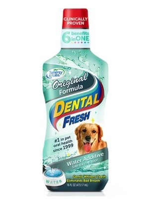 LOGO_Dental Fresh