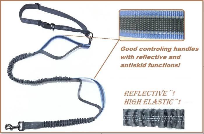 LOGO_Fashion antiskid and reflective function elastic leash with reflective waist belt