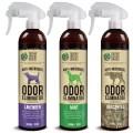 LOGO_Der Rest des Nano-Wissenschaft Geruch Eliminator