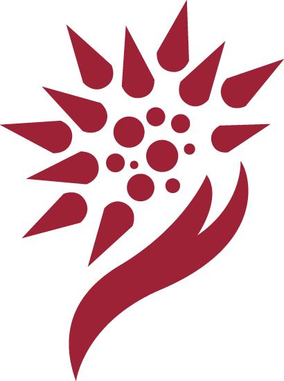LOGO_Waratek Runtime Application Self Protection (RASP) by Virtualization