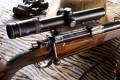 LOGO_Bolt Action Rifle