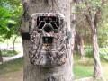 LOGO_Trail camera DTC-880V