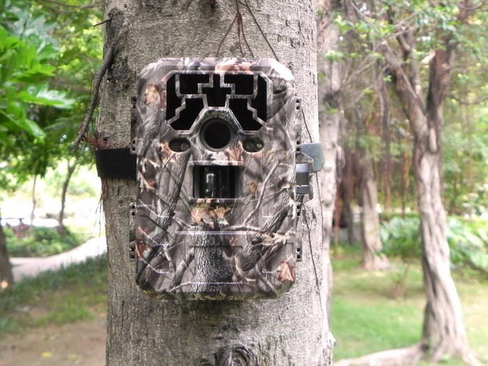 LOGO_Trail camera DTC-880V