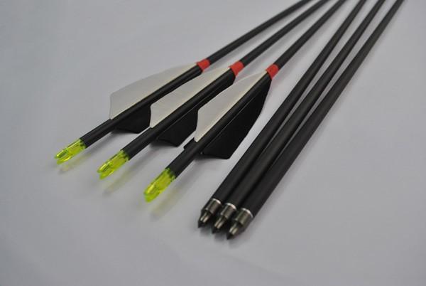 LOGO_Roll fiberglass arrow