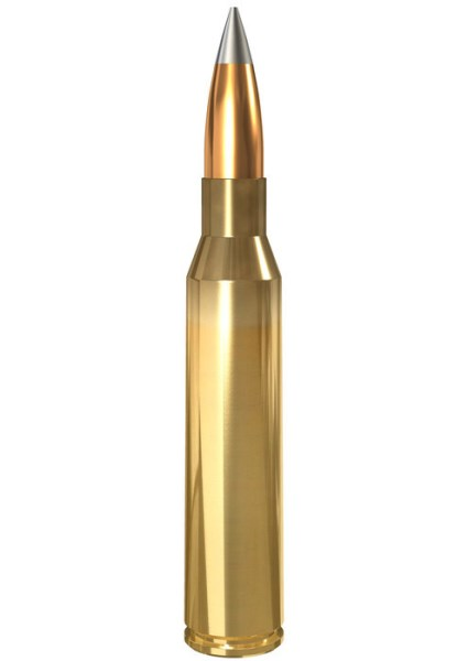 LOGO_Tactical Ammunition