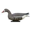 LOGO_White Front Goose