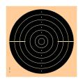 LOGO_Schnellfeuerpistolenscheibe