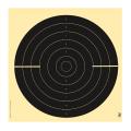 LOGO_Rapid Fire Pistol Target 25 m