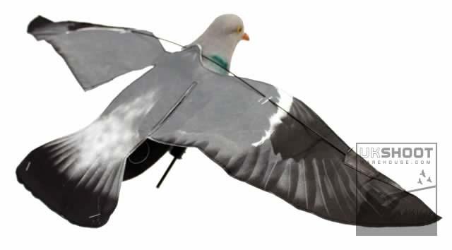 LOGO_Sillosocks Hypa-Flap Flapper Pigeon