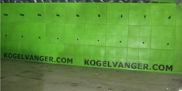LOGO_Bullettrap walls