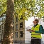 LOGO_Bauwerke und Umwelt