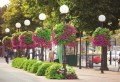 LOGO_Hängende Blumenkaskaden