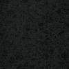 LOGO_Black Pearl (G684)