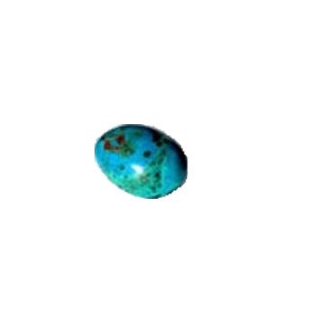 LOGO_Chrysokoll egg