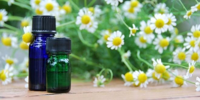 LOGO_German chamomile oil Organic /Biodynamic