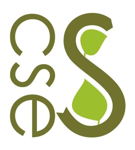 LOGO_CSE Certified Sustianable Economics