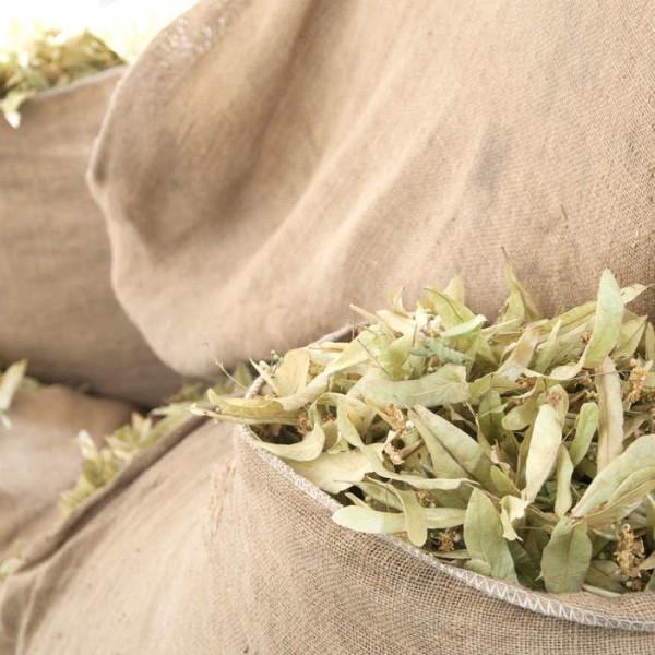 LOGO_Organic Dried Herbs