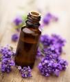 LOGO_Lavender oil Organic/Biodynamic