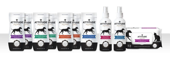 LOGO_ATTITUDE Furry Friends Pet Care