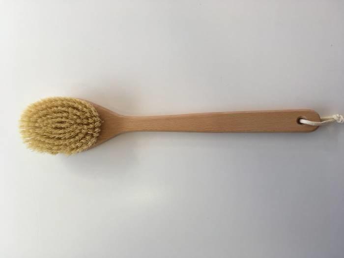 LOGO_Cactus Sauna Brush