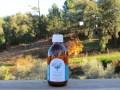 LOGO_PROENTIA Eucalyptus globulus Organic Essential Oil